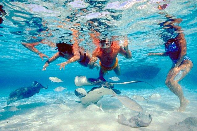 grand cayman snorkeling aqua bay club condos activities